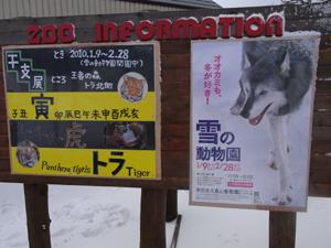 冬の大森山動物園へ
