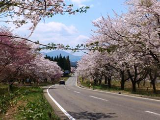 田沢湖高原
